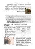 Réseaux d'assainissement : les nouveaux ... - Le CETE de l'Est - Page 5