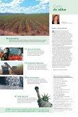 18ª Edição CASADA.qxd - Canal : O jornal da bioenergia - Page 3