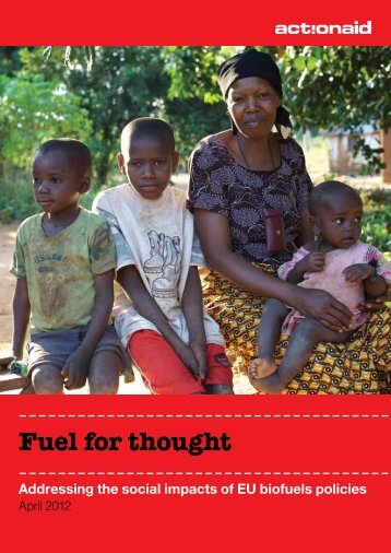 Fuel for thought - ActionAid International
