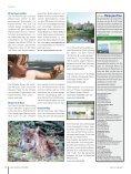 Ferntourismus - Seite 6