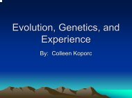 Evolution, Genetics, and Experience