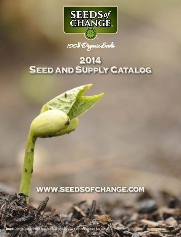 soc-2014-catalog-for-web-site