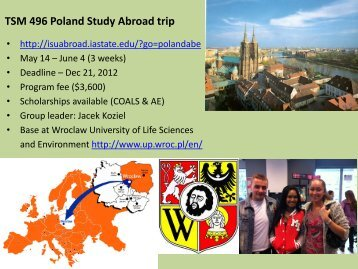 here - Study Abroad
