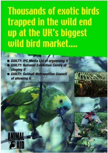 Wild Bird Market Leaflet - Animal Aid