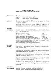 CURRICULUM VITAE C.P.C. PABLO OCTAVIANO MENDOZA ...
