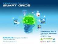 Energiewende braucht intelligente Vernetzung - Renner Institut