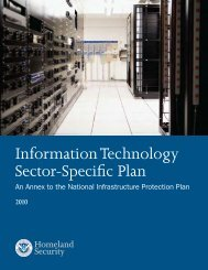 Information Technology Sector-Specific Plan 2010