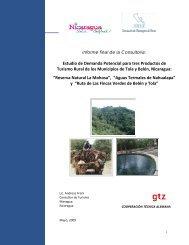 Demanda potencial informe final 040509.pdf - MASRENACE