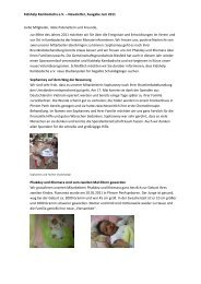 Kidshelp Kambodscha e.V. – Newsletter, Ausgabe Juni 2011 Liebe ...