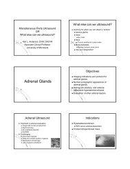 Adrenal Glands - University of Minnesota
