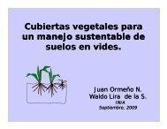 Cubiertas vegetales para un manejo sustentable de suelos en ... - INIA