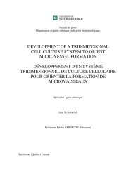 development of a tridimensional cell culture system to orient ...
