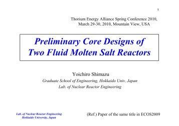Preliminary Core Designs Of Two Fluid Molten Salt Reactors