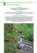 VÝROČNÁ SPRÁVA 2012 - Lesy SR š.p. - Page 7