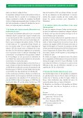 BULLETIN D'INFORMATIONS PHYTOSANITAIRES ... - Union africaine - Page 5