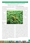 BULLETIN D'INFORMATIONS PHYTOSANITAIRES ... - Union africaine - Page 7