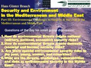 Security and Environment in the M editerranean and M iddle East