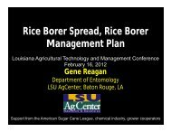 Rice Borer Spread, Rice Borer Management Plan - Gene Reagan ...