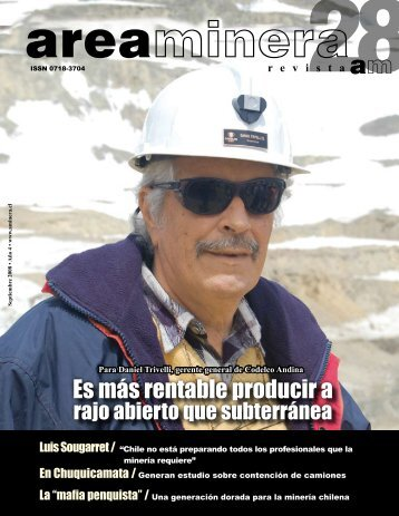 revista - Areaminera