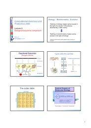 Computational Genomics and Proteomics 2008 Functional ... - IBIVU