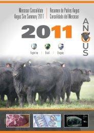 Resumen de Padres Angus Consolidado del Mercosur 2011