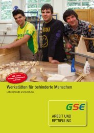 Werkstätten für behinderte Menschen - GSE