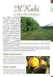 Kaki in Agricoltura biologica - Tec.bio