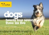 A message from the Chairman - Dogs Trust
