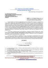 Testimonio Social a la Licitación Pública Nacional Mixta No ...