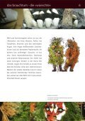 Presseheft | Dokumentarfilm Â«Silvesterchlausen ... - MovieBiz Films - Seite 7