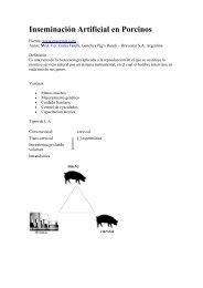 INSEMINACION ARTIFICIAL EN PORCINOS.pdf