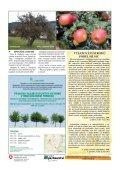Ovocné stromy v zemědělské krajině - Page 2