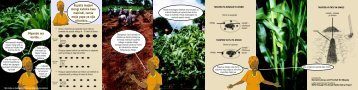 new maize leaflet SWAHILI.p65 - Smallholder Dairy Project