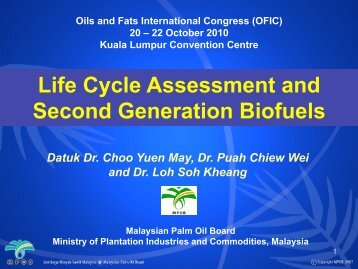 Life Cycle Assessment and Second Generation Biofuels - MOSTA