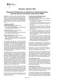 Merkblatt - Definition KMU Allgemeine Erläuterungen zur Definition ...