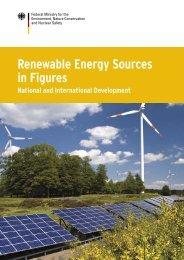 Renewable Energy Sources in Figures - Fes-japan.org