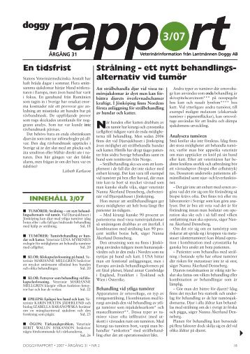 Doggy-Rapport nr 3-07.qxd