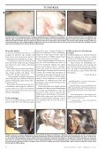 Doggy-Rapport nr 3-07.qxd - Page 2