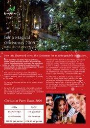 For a Magical Christmas 2009 - Center Parcs