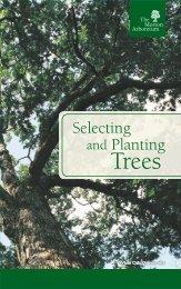 15CTP_Tree Selection Planting_BRCH_ReaderSpread_0331_sm-1