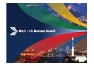 Kathleen McInerney - Brazil-US Business Council