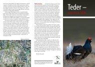 Loe edasi - Eesti ornitoloogiaühing