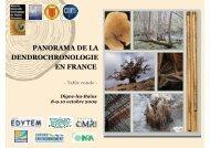 PANORAMA DE LA DENDROCHRONOLOGIE EN FRANCE - edytem