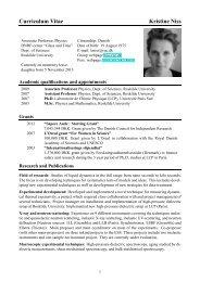 Curriculum Vitae Kristine Niss - dirac