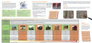 Houes rotatives - Chambre d'agriculture