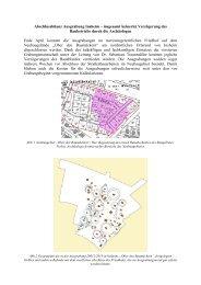 Abschlussbilanz Ausgrabung Insheim Endfassung Text Bilder