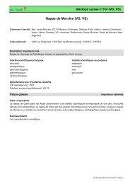 Nappe de Morcles (VD, VS) - admin.ch