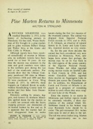 3675 Pine Marten Returns to Minnesota - webapps8
