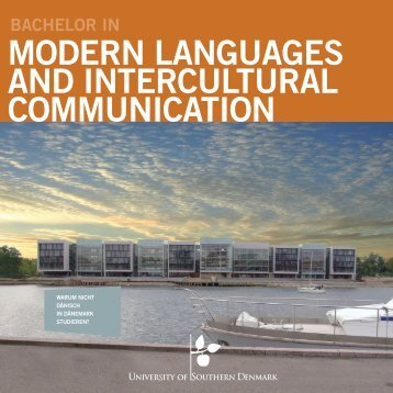 bachelor in modern languages and intercultural communication