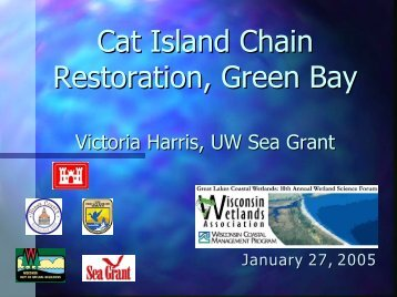 Cat Island Chain Restoration, Green Bay